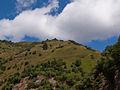 Svaneti View from Ushguli-Vaizdas iš Ushguli (3872434120).jpg