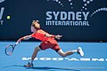 Sydney International Tennis ATP 250 (46000970085).jpg