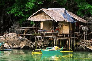 Tagbanwa - A typical Tagbanwa hut.