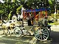 Tanga (Carriage) (টমটম).jpg