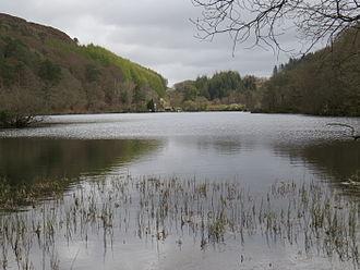 Llyn Mair - Llyn Mair looking towards the east