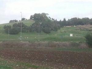 Shimron - Tel Shimron