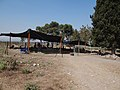 Tel Shimron - Archaeological excevation of the site of the first settelment of Nahalal (12).jpg