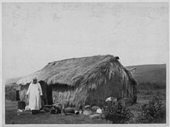 Thatched grass house in Honolulu, photograph by Frank Davey (PP-32-2-026).jpg