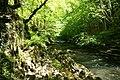 The Afon Edw - geograph.org.uk - 1332316.jpg