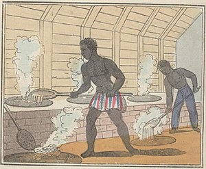 The Black Man's Lament or How To Make Sugar (page 18 crop).jpg
