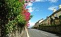 The Downpatrick Road, Strangford - geograph.org.uk - 850943.jpg