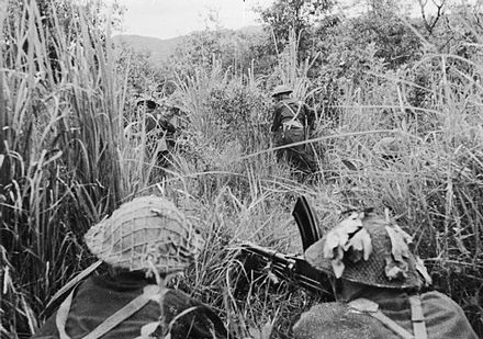 British soldiers search through long grass for Japanese snipers while covered by a Bren gun team The War in the Far East- the Burma Campaign 1941-1945 IND3479.jpg