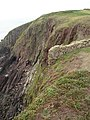 The end of a field wall, Caldey Island - geograph.org.uk - 588666.jpg