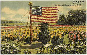 Ovid, Michigan - Postcard for the Third Annual Gladiolus Festival held at Ovid August 30-31, and September 1, 1941.