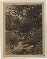 The gorge (HS85-10-39840).jpg