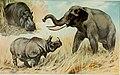 The new international encyclopaedia (1905) (14595359467).jpg