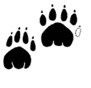 Pugmark - An image of a thylacine pugmark