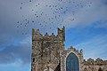 Tintern Abbey - panoramio (2).jpg