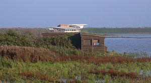 Titchwell Marsh - Image: Titchwell 131111 238