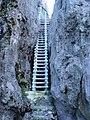 Togo Chasm, LookingUp, Niue.jpg