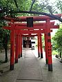 Toriis of Fushimi Inari Shrine and Unome Inari Shrine in Washio-Atago Shrine.jpg