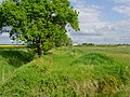 Towards Newstead Farm - geograph.org.uk - 806944.jpg