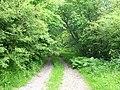 Track to Pentre Farm, near Bryneglwys - geograph.org.uk - 180557.jpg