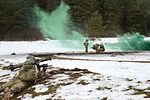 Training exercise with M4A1 rifles 170206-A-EO786-067.jpg