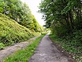 Trans Pennine Trail - geograph.org.uk - 1306192.jpg