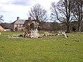 Tree stump at Elyhaugh - geograph.org.uk - 1802192.jpg