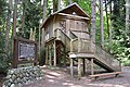 Treehouse-RedwoodPark.JPG