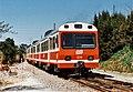 Tren dièsel sèrie 3000 de FGC.jpg