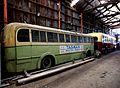 Trolley Buses in need of restoration (6) (8068862029).jpg