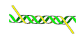 TsDNA.2.png
