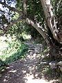 Turkey, Hatay province. Mule path from Çevlik to Kapisuyu. - panoramio (1).jpg