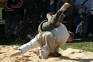 Sport in Switzerland - Traditional wrestling