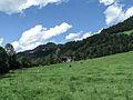 Tussen Walchsee en Rettenschoss, panorama foto1 2012-08-07 12.35.jpg