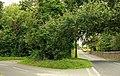 Two roads near Crossgar - geograph.org.uk - 1441125.jpg