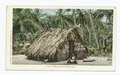 Typical Puerto Rican Hut, Puerto Rico (NYPL b12647398-66680).tiff