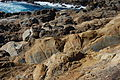 USA-Point Lobos State Reserve-South Shore Trail-5.jpg