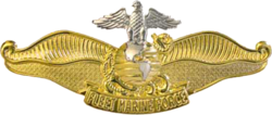 USN - Fleet Marine Force Chaplain Insignia.png