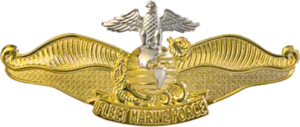Fleet Marine Force Ribbon - Image: USN Fleet Marine Force Chaplain Insignia