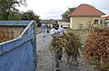 US Navy 070402-N-5459S-017 Air Traffic Controller 1st Class Tara Y. King, assigned to the Standing NATO Maritime Group One (SNMG1), hauls shrubbery to a waste can during a community relations project at a senior citizens'.jpg