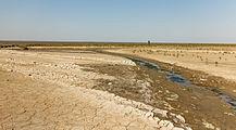 Uniek door eb en vloed steeds wisselend kweldergebied. Locatie, Noarderleech Provincie Friesland 018.jpg