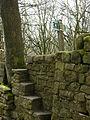 Unusual stile near Grindles farm - geograph.org.uk - 380547.jpg
