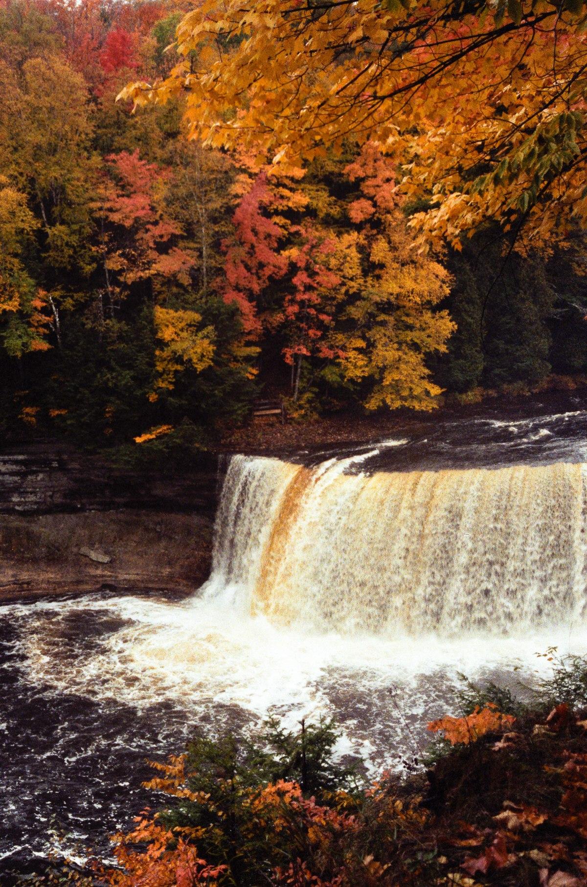 Tahquamenon Falls State Park - Wikipedia