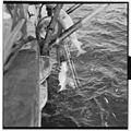 Vårfiske på Vardø - L0049 770Fo30141609280031.jpg