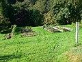 Vegetable plot, Glanaber - geograph.org.uk - 978331.jpg