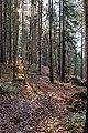 Velden am Wörther See Köstenberg Wanderweg zur Burgruine Hohenwart 08112018 5286.jpg