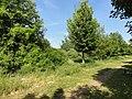 Vendin-le-Vieil - Fosse n° 10 - 10 bis des mines de Lens, puits n° 10 bis (D).JPG