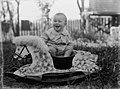 View of a baby on a rocking horse (AM 80590-1).jpg