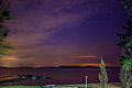 Violet Nights (7114246729).jpg