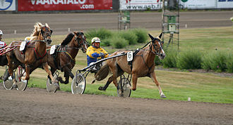 Sport in Finland - Pertti Puikkonen driving two-time Ravikuningatar title winner I.P. Vipotiina at Finland's main race track in Vermo.