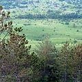 Vodice, Lanišće, Хорватия - panoramio (1).jpg